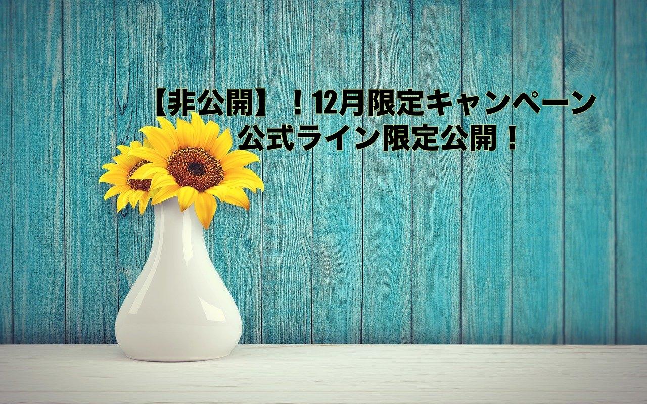 【非公開】!12月限定キャンペーン 公式ライン限定公開!